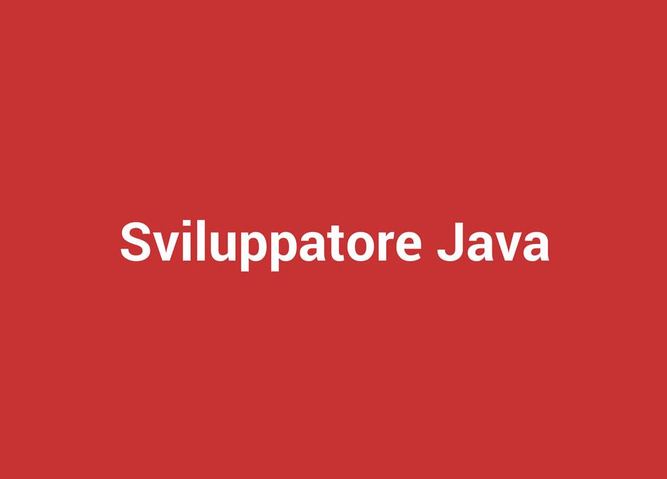 Sviluppatore Java